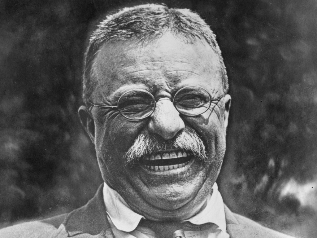a biography and life work of theodore roosevelt 26th president of the united states Theodore roosevelt, the 26th president of the united states of america was born on october 27, 1858 he was born in new york city, new york to his parents theodore.